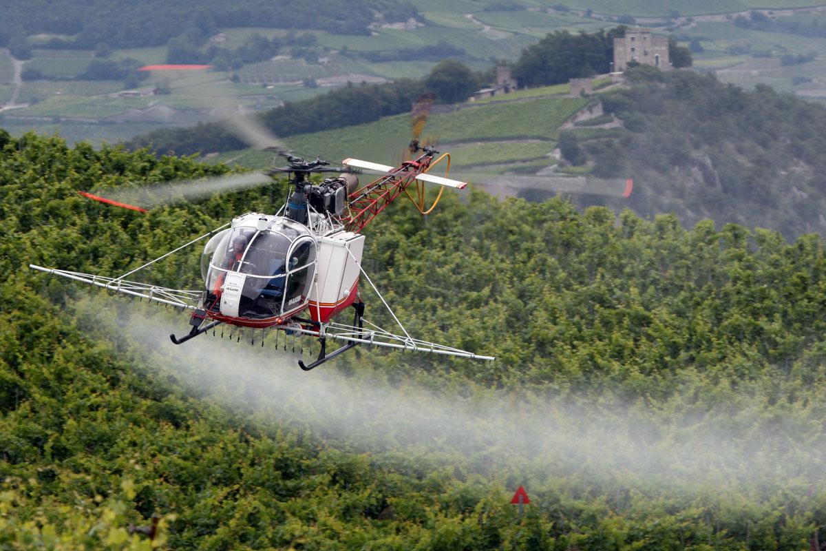 Helico passion sulfatage de vignes par h licopt re - Traitement de la vigne ...